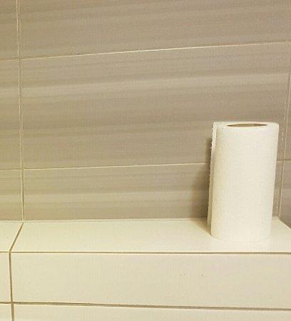 Apartamenty Zakrzowek: Tylko jedna rolka papieru i ręcznik !