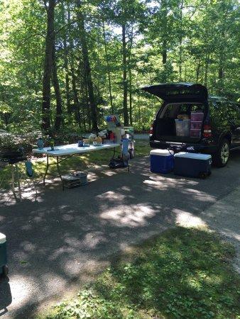 Bandy Creek Campgrounds: photo2.jpg