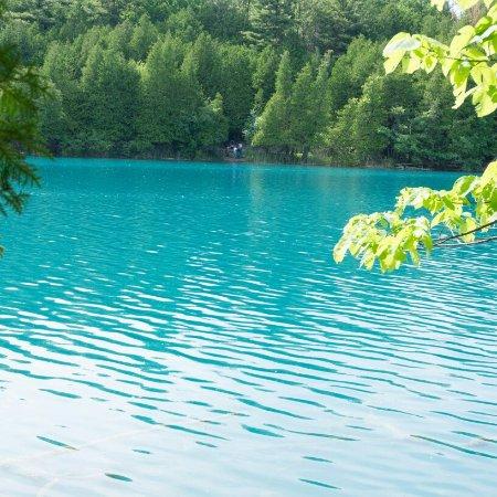 Green Lakes State Park: IMG_20160613_130439_large.jpg