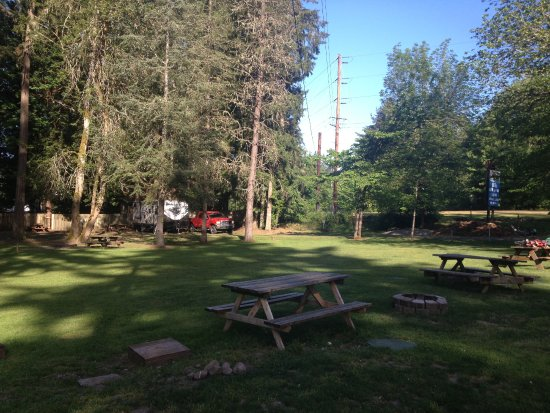 Silverlake, Вашингтон: Our rig, nestled in the trees