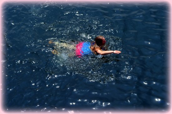 Isle La Motte, VT : swimming at the offsets