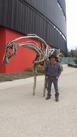 horse sculptured out of drift wood picture of nevada museum of art rh tripadvisor com