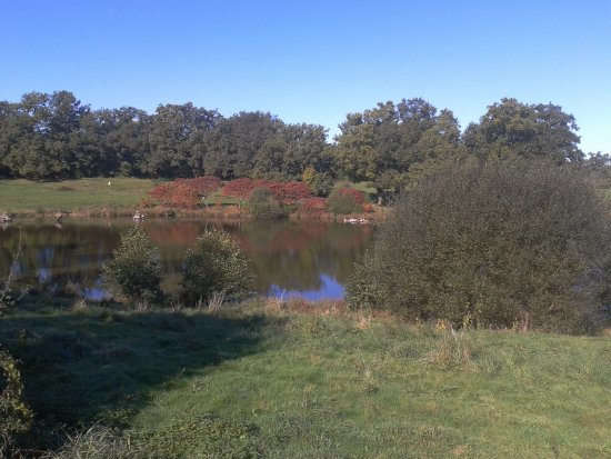 Bussiere-Poitevine, Frankrike: vue de notre belle campagne