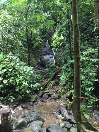Safari Tours: A small waterfall we passed during the hike