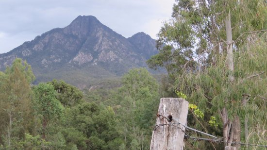Barney View, Australien: Captivating views of Mt Barney