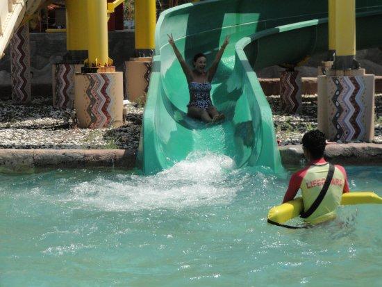 Splash Jungle Waterpark : детская горка