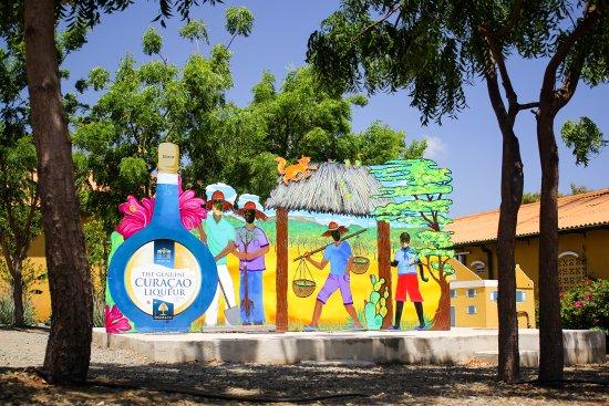 Curacao Liqueur Distillery: Experience Chobolobo
