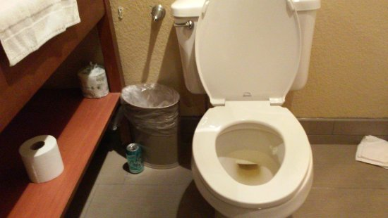 Bethany, มิสซูรี่: toilet used and not flushed, garbage sitting around room