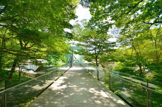 箱根Pola美术馆