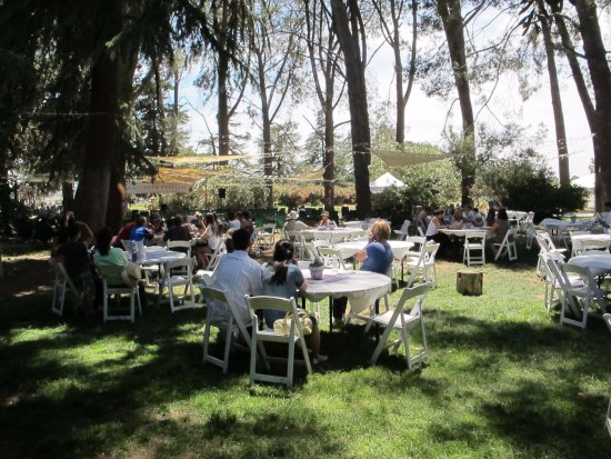 Cherry Valley, CA: Outdoor eating areas under the trees