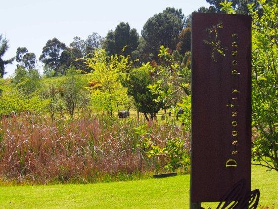 Pickering Brook, Australië: Dragonfly ponds