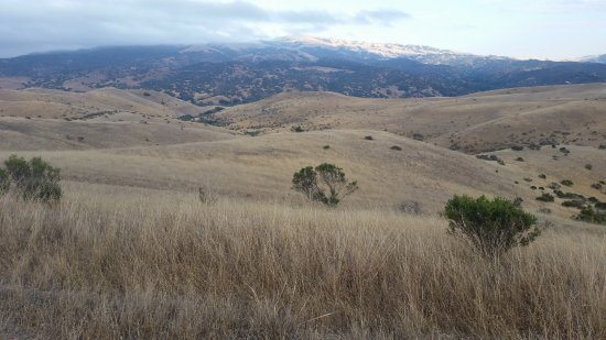 Salinas, Californie : Quite of grassy hills of Fort Ord