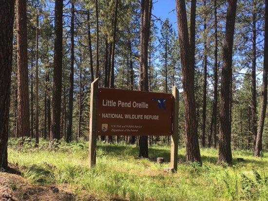 Little Pend Oreille National Wildlife Refuge照片