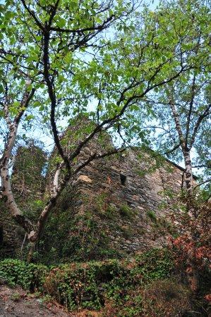 Saint-Privat-de-Vallongue, France : Vue de la rivière