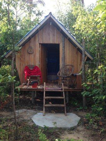 Birdhouse Accomodation