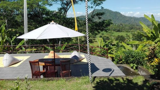 Subak Tabola Villa: Well cared for gardens.