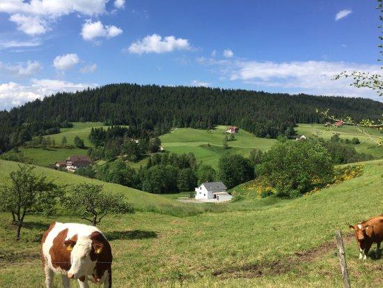 Fehrenbacherhof : photo1.jpg