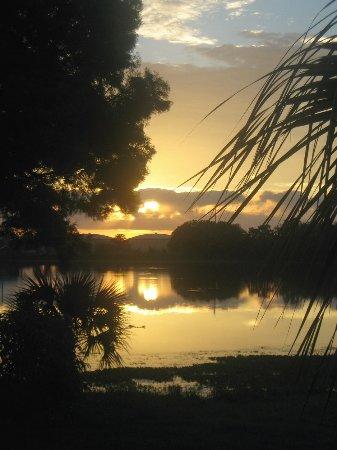 Lake Ida Beach Resort: Unit 12