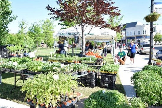 Goderich BIA Farmers' Market