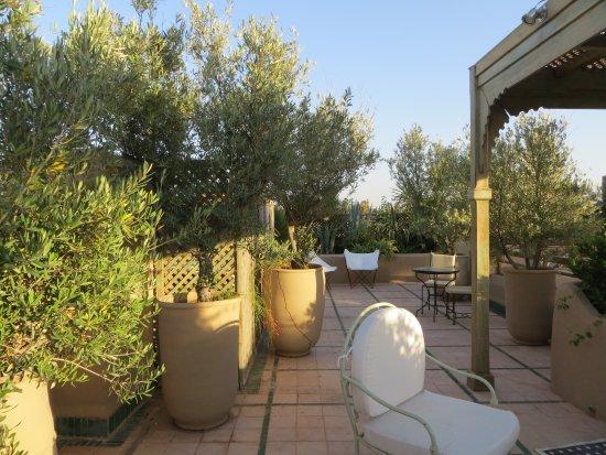 Les Jardins de la Medina: roof terrace