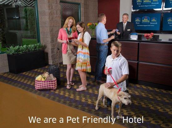Best Western Radford Inn: Pet Friendly Hotel