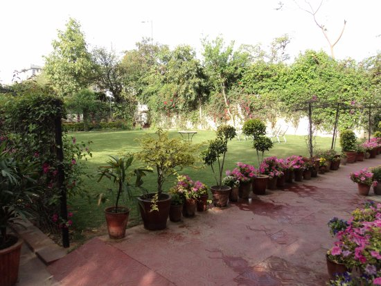 Hotel Meghniwas: Garden in the front