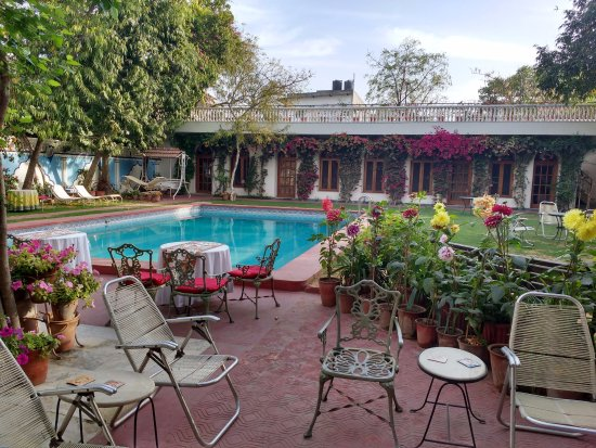Hotel Meghniwas: Pool in the backside