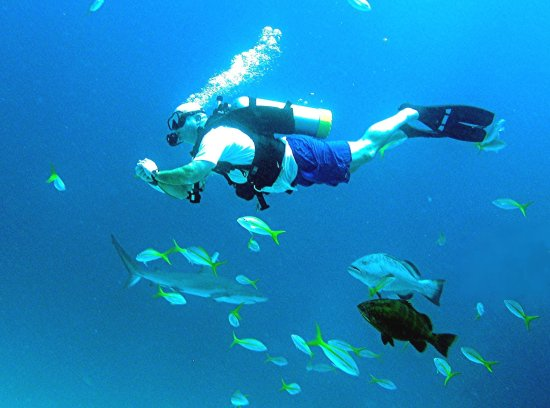 Marsh Harbour, Great Abaco Island: Scuba Diver