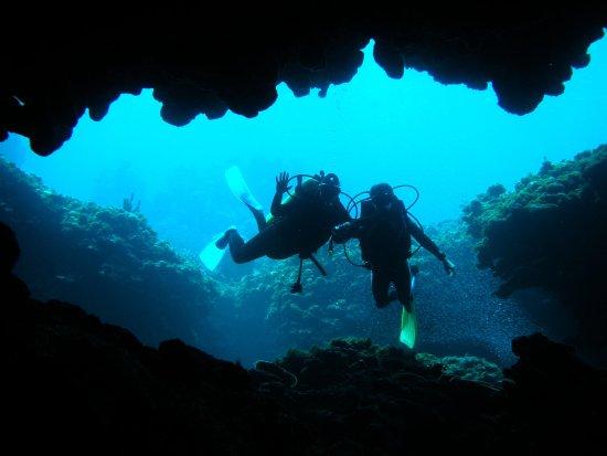 Marsh Harbour, Isla de Gran Ábaco: Scuba Diving
