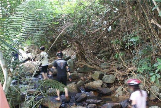 Yanuo Tropical Rain Forest Resort: Туристы желающие прогуляться по ущельям