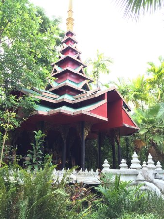 Lipa Noi, Thailand: photo5.jpg