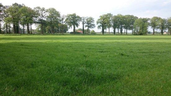 Arhanta Yoga Ashram Netherlands: Nice and peaceful surroundings