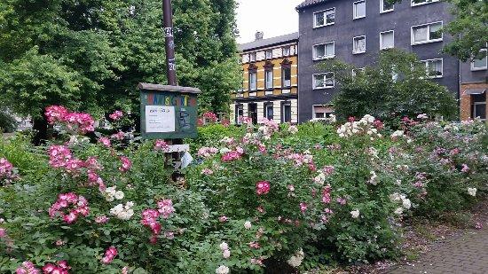 Immanuel Kant Park