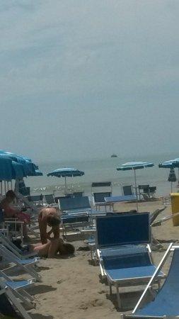 Hotel Pineta Mare : TA_IMG_20160616_144400_large.jpg