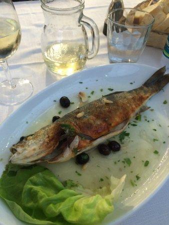 Pesce Al Forno Alla Ligure Branzino Foto Di Taverna Azzurra