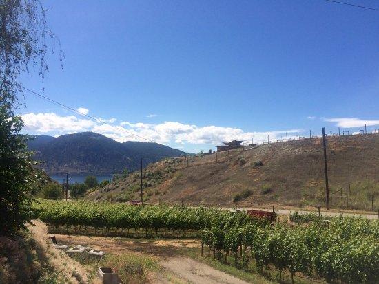 Howling Bluff Estate Winery : photo0.jpg