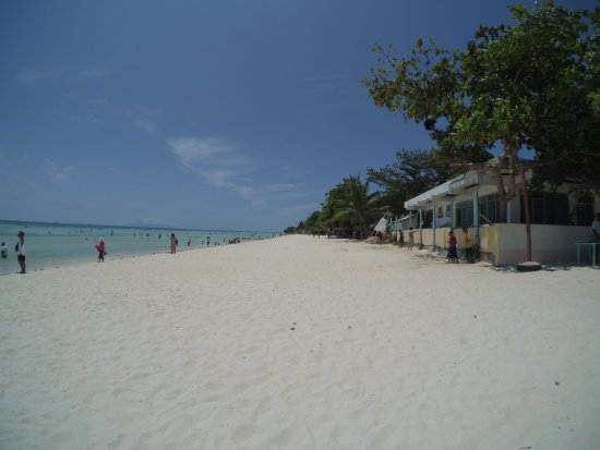 Quinale Beach In Anda Bohol