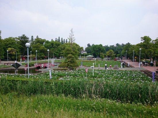 碧南市: 画像