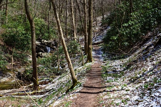 Erwin, TN: Snow on Rock Creek Falls Trail