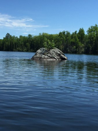 Ely, MN: Bear Head Lake State Park
