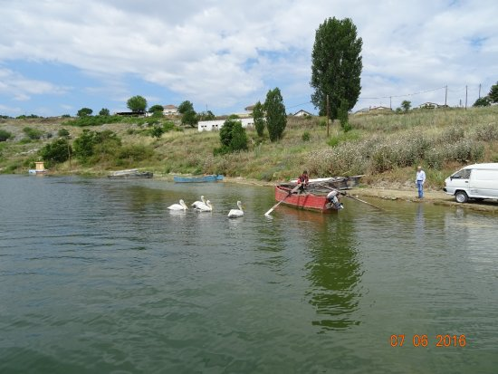 Agios Athanasios, Grecja: Βεγορίτιδα με τους πελεκάνους και τους ψαράδες της!