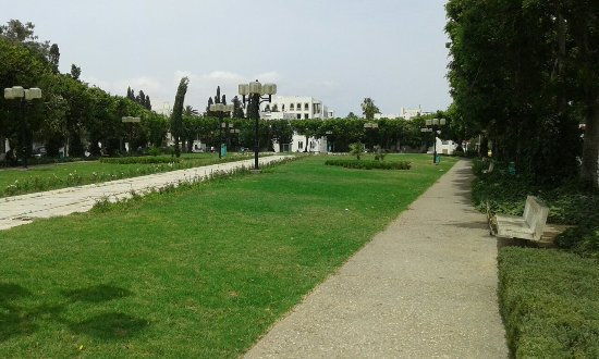 Hotel Ariha : Tout près de l'hôtel,un beau parc(Parc d'Afrique)Et une belle place dédiée à Pasteur.Et une mosq