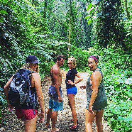 Honolulu Tours Tripadvisor