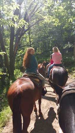 Canyon Creek Horseback Riding Stables : 20160613_115151_large.jpg