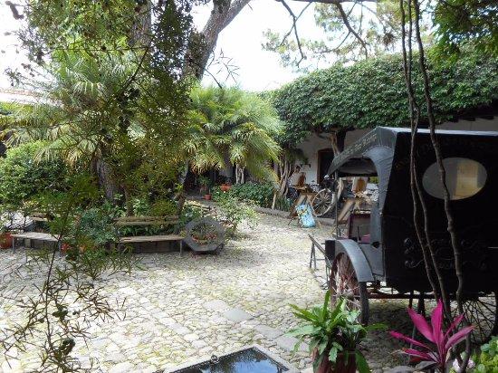 Hotel Casa Antigua: Quiet and quaint