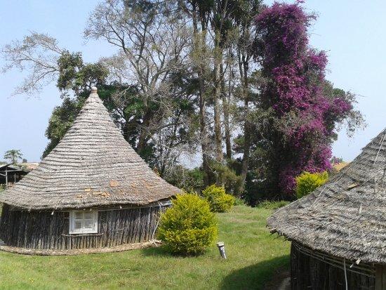 Njombe صورة فوتوغرافية