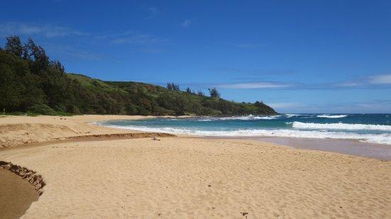 Kauai Photo Tours 사진