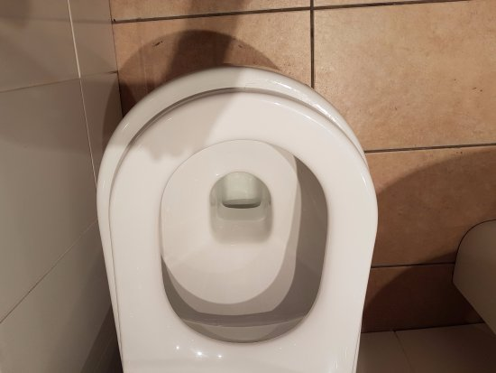 Toilet Bowl Seat Sizes View elongated toilet seat dimensions
