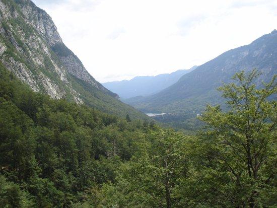 Slap Savica : view