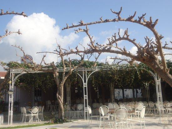 Taverna Ambrosia: umas das entradas